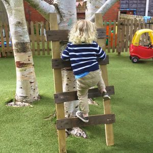 Elmscot Broussa Ladder Activity (5)